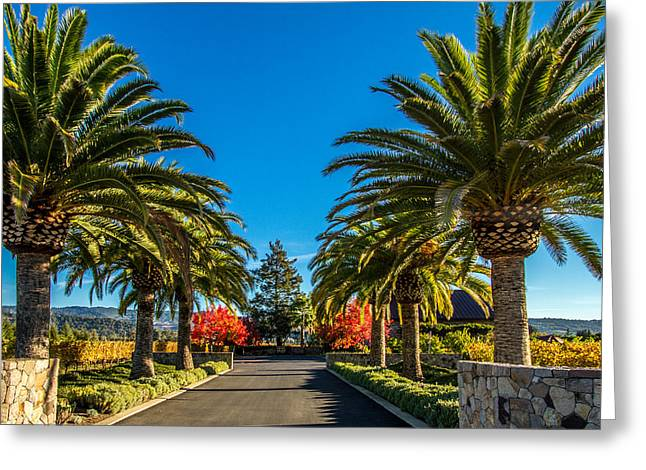 Northern California Vineyards Greeting Cards - Heitz Cellars Greeting Card by Bill Gallagher