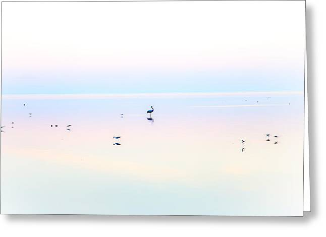 Desert Lake Greeting Cards - Heiwa II Greeting Card by Peter Tellone