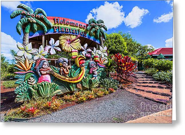 Cut-outs Greeting Cards - Helemano Plantation Sign Greeting Card by Eric Evans