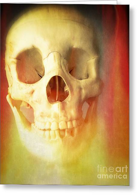 Skeleton Greeting Cards - Hell Fire Greeting Card by Edward Fielding