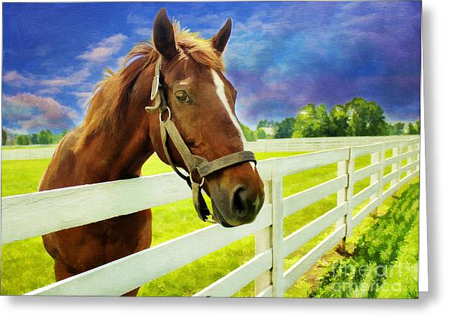 Ranch Digital Art Greeting Cards - Hello From the Bluegrass State Greeting Card by Darren Fisher