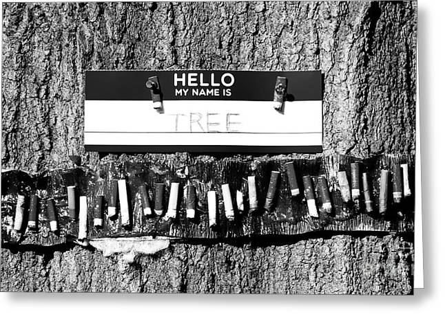 Ying Greeting Cards - Hello My Name Is Tree Greeting Card by Robert Yaeger