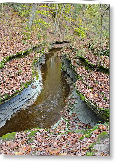 Mcconnels Mill Greeting Cards - Hells Hollow Trail 1 Greeting Card by Marie Spence