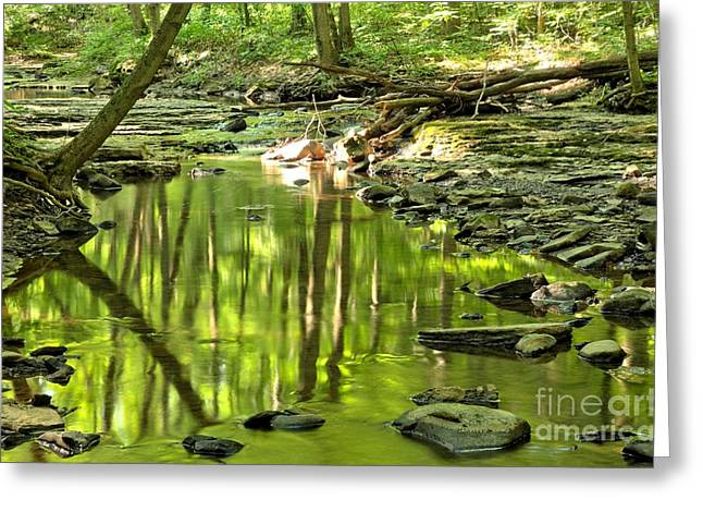 Mcconnells Mill Greeting Cards - Hells Run Reflections Greeting Card by Adam Jewell