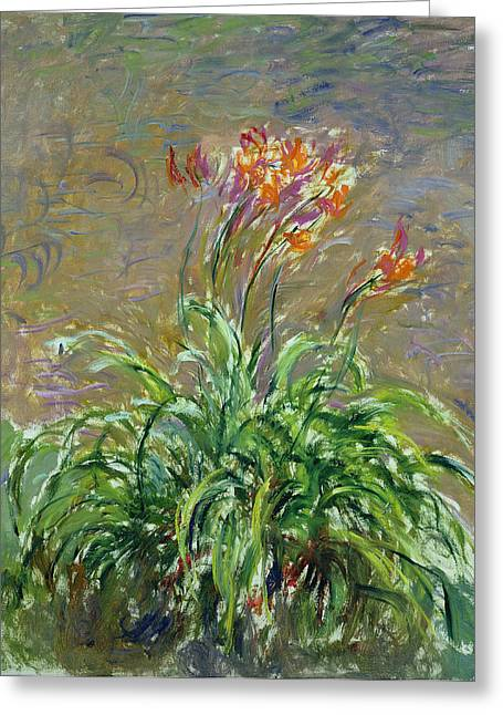 Les Greeting Cards - Hemerocallis, 1914-17 Oil On Canvas Greeting Card by Claude Monet