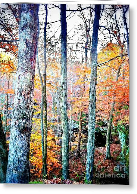Indiana Autumn Greeting Cards - Hemlock Cliffs I Greeting Card by Leanne Yeoman