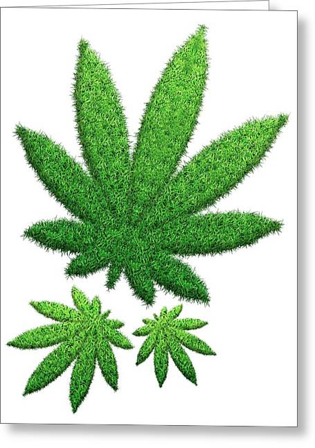 Hemp Leaves Made From Grass Greeting Card by Victor Habbick Visions