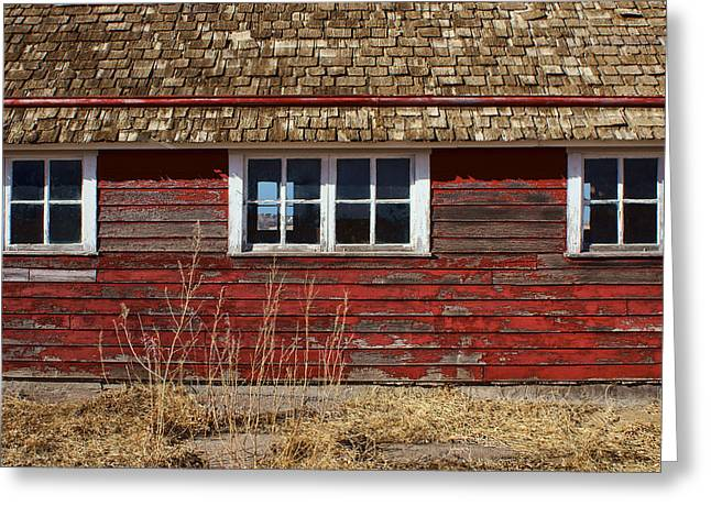 Outbuilding Greeting Cards - Hen House Windows Greeting Card by Nikolyn McDonald