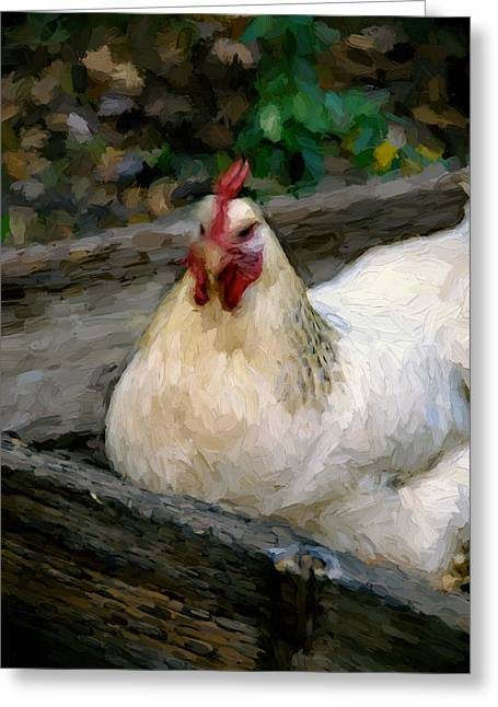 Sonoma Mixed Media Greeting Cards - Hen in a Box Greeting Card by John K Woodruff