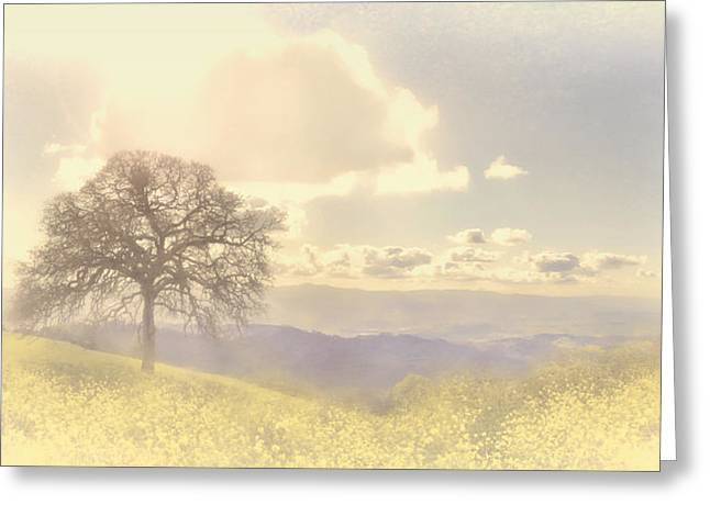 Silicon Valley Art Greeting Cards - Henry Coe Oak Greeting Card by Catherine Noel