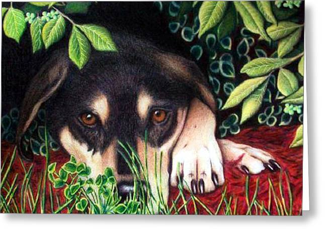Puppies Drawings Greeting Cards - Henry Greeting Card by Danielle R T Haney