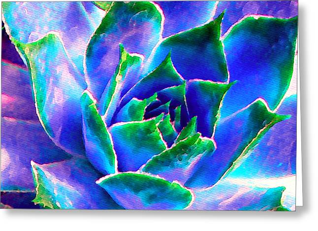 Succulents Greeting Cards - Hens and Chicks series - Touches of Blue  Greeting Card by Moon Stumpp