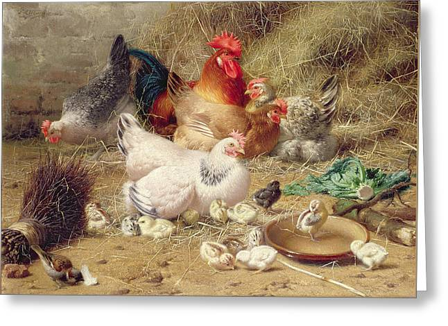 Hens Roosting With Their Chickens Greeting Card by Eugene Remy Maes