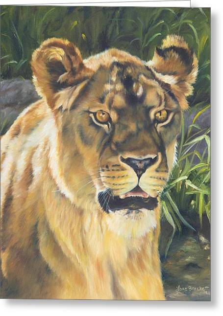 Lions Greeting Cards - Her - Lioness Greeting Card by Lori Brackett