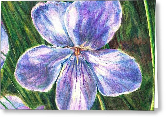 Daylight Drawings Greeting Cards - Her Name Was Violet Greeting Card by Shana Rowe
