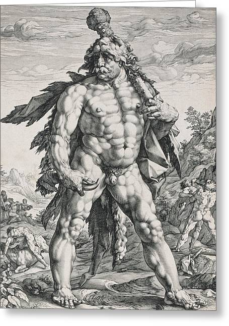 Full Body Drawings Greeting Cards - Hercules Greeting Card by Hendrik Goltzius