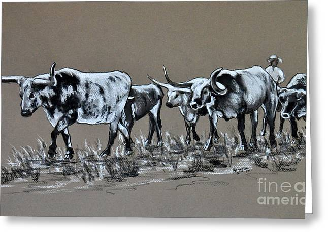 Cattle Pastels Greeting Cards - Herding Longhorns Greeting Card by Judy Sprague