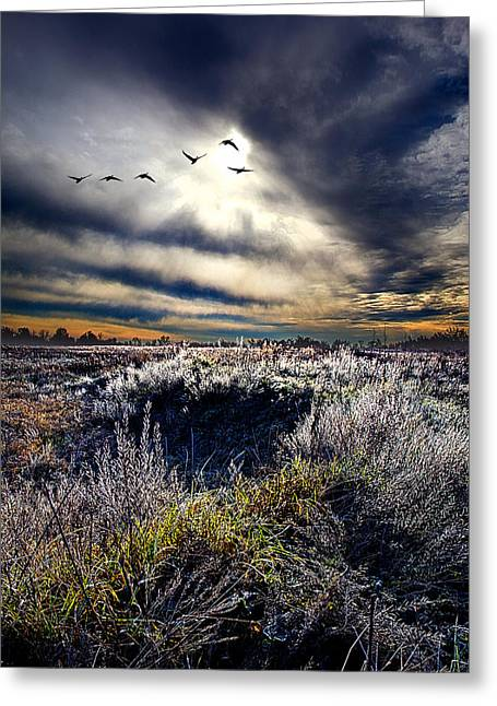 Geographic Greeting Cards - Here and Now Greeting Card by Phil Koch