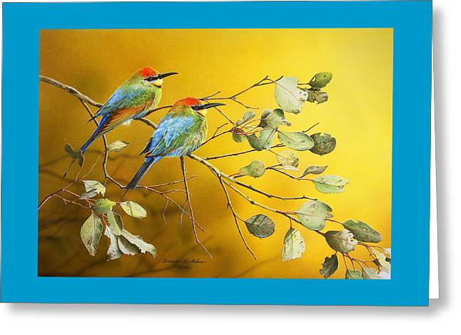 Australian Bees Greeting Cards - Here Comes The Sun - Rainbow Bee-Eaters Greeting Card by Frances McMahon