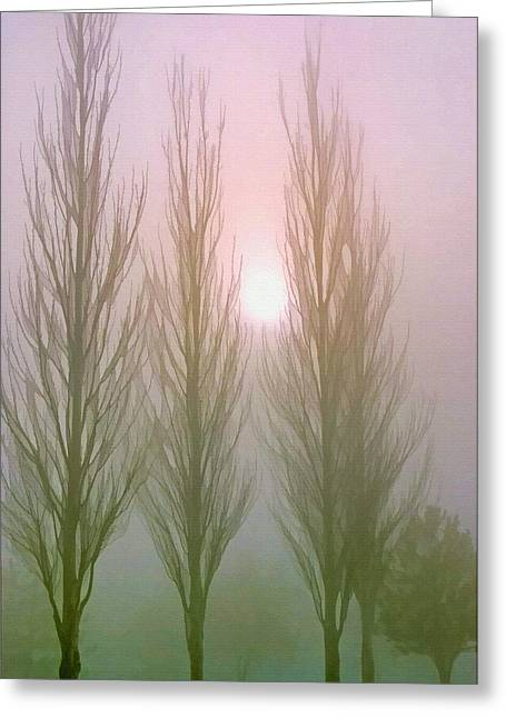 Bare Trees Mixed Media Greeting Cards - Here Comes the Sun -  Winter Poplars in Fog 2 Greeting Card by Steve Ohlsen