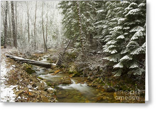 North Idaho Greeting Cards - Here Comes Winter Greeting Card by Idaho Scenic Images Linda Lantzy