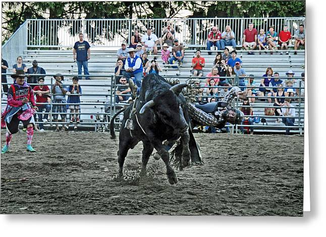 Photographs Greeting Cards - Here I Go Again Greeting Card by Gary Keesler