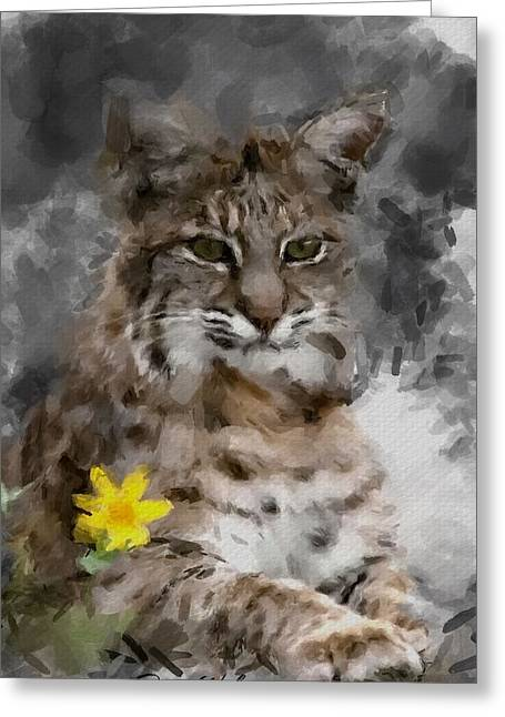 Bobcats Digital Art Greeting Cards - Here Kitty Kitty Greeting Card by Dennis Wickerink
