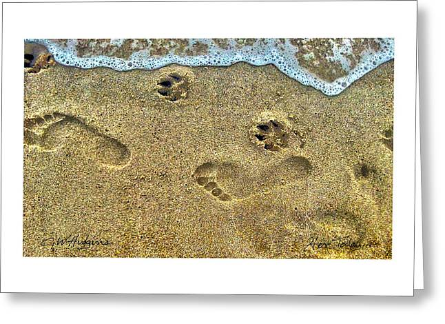Dog In Waves Print Greeting Cards - Here Today ... Greeting Card by GW Hudgins