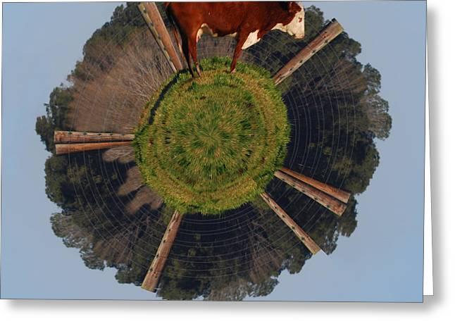 Hereford On Top Of The Pasture Wee Planet Greeting Card by Paulette B Wright