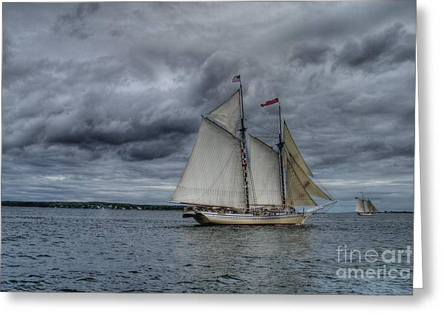 Historic Schooner Greeting Cards - Heritage  Greeting Card by Alana Ranney