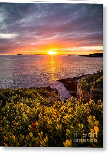 New England Ocean Greeting Cards - Hermit Island Sunset Greeting Card by Benjamin Williamson
