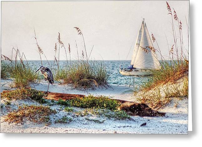 Sand Fences Digital Art Greeting Cards - Heron and Sailboat Larger Sizes Greeting Card by Michael Thomas
