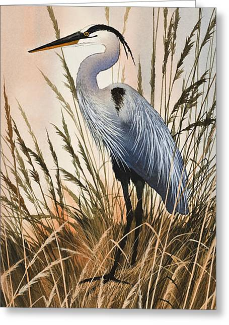 Heron Greeting Card Greeting Cards - Heron in Tall Grass Greeting Card by James Williamson