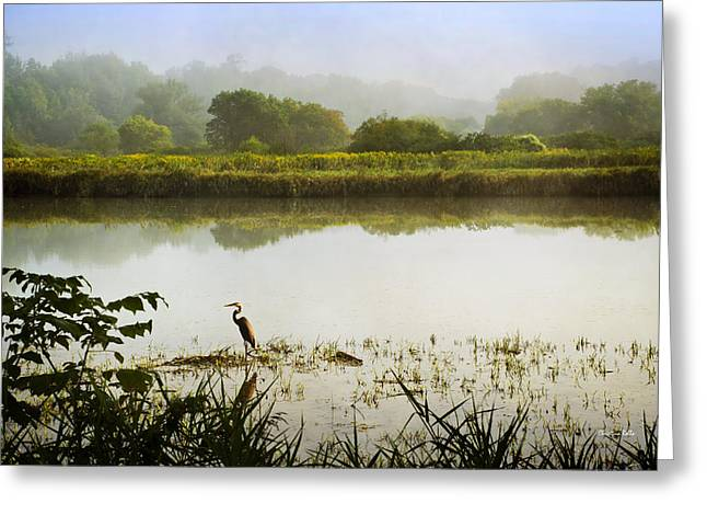 Heron Greeting Card Greeting Cards - Heron On Foggy River Sunrise Landscape Greeting Card by Christina Rollo