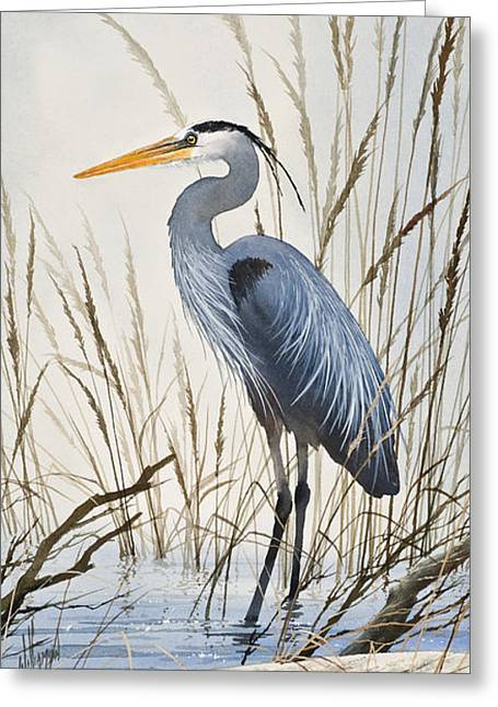 James Paintings Greeting Cards - Herons Natural World Greeting Card by James Williamson