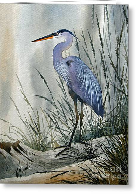 Great Blue Heron Greeting Cards - Herons Sheltered Retreat Greeting Card by James Williamson