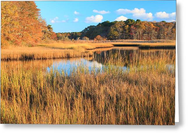 Harwich Greeting Cards - Herring River Cape Cod Marsh Grass Autumn Greeting Card by John Burk