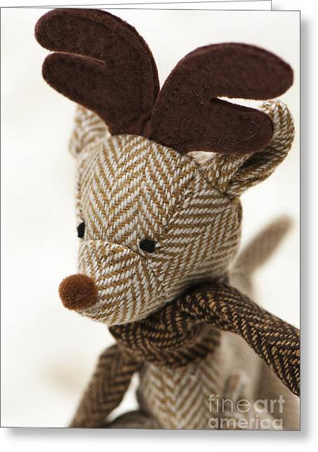 Special Occasion Greeting Cards - Herringbone Reindeer Greeting Card by Anne Gilbert