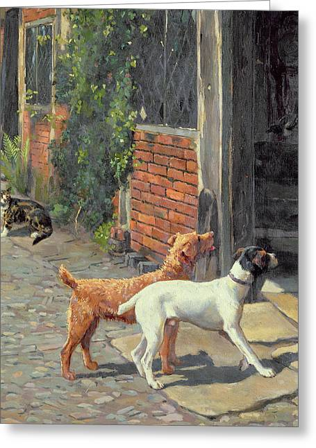 Domestic Dog Greeting Cards - Hesitation Greeting Card by Alfred Duke