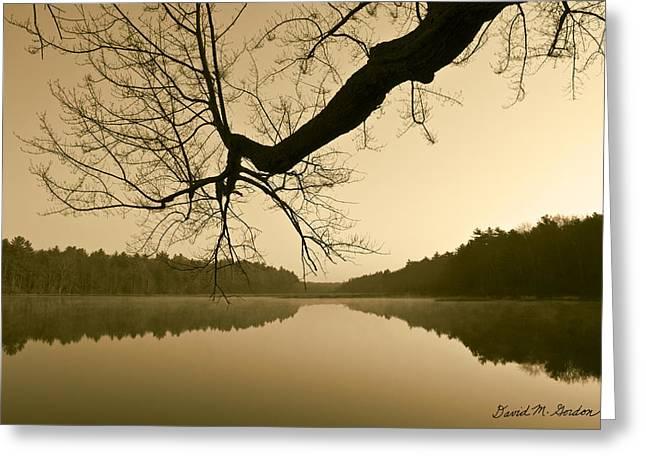 Brown Toned Art Greeting Cards - Hewitt Pond Greeting Card by David Gordon