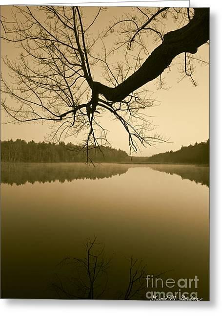 Brown Toned Art Greeting Cards - Hewitt Pond No. 2 - vertical Greeting Card by David Gordon