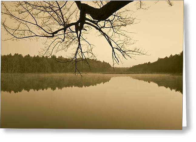 Hewitt Pond No. 2 - vertical Greeting Card by David Gordon