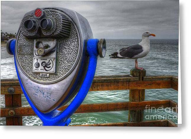 Hey Somebody Look At Me Greeting Card by Bob Christopher