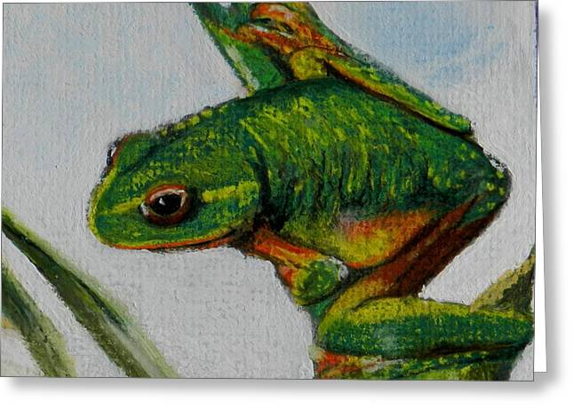 Amphibians Pastels Greeting Cards - Hey You Greeting Card by Sandra Sengstock-Miller
