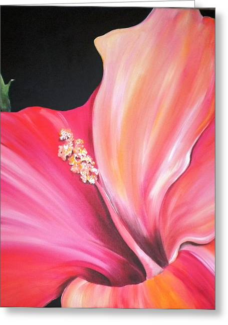 Stamen Paintings Greeting Cards - Hibiscus Greeting Card by Debi Starr