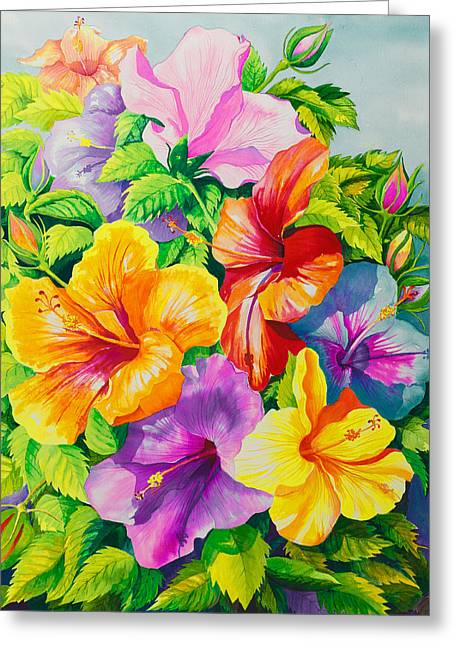 Hibiscus Greeting Cards - Hibiscus Rainbow Array Greeting Card by Janis Grau