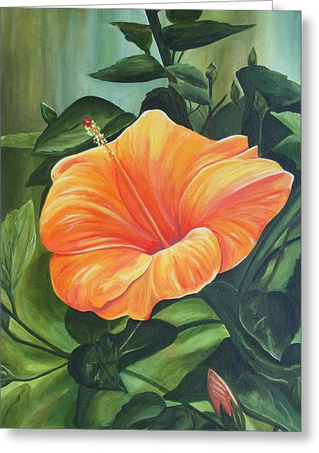Lyndsey Hatchwell Greeting Cards - Hibiscus - Tangerine Greeting Card by Lyndsey Hatchwell