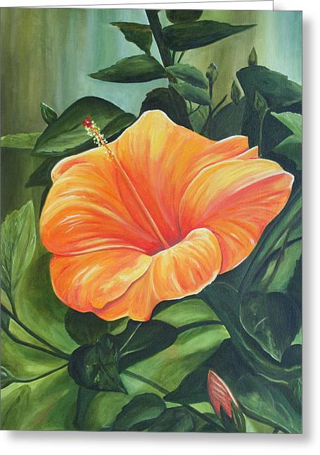 Hibiscus - Tangerine Greeting Card by Lyndsey Hatchwell
