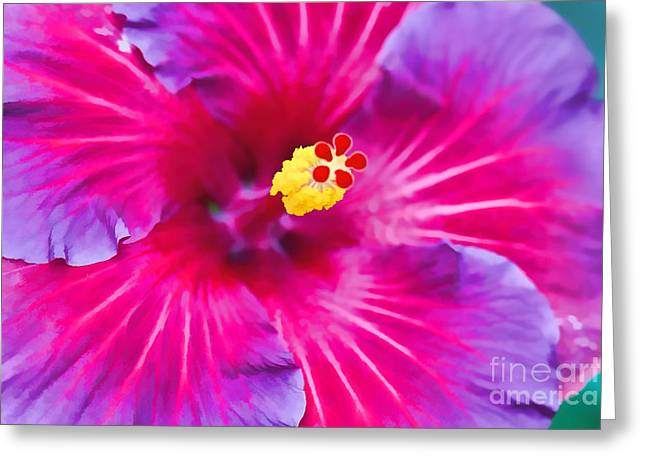 Stamen Digital Art Greeting Cards - Hibiscus Watercolor Greeting Card by Terry Weaver