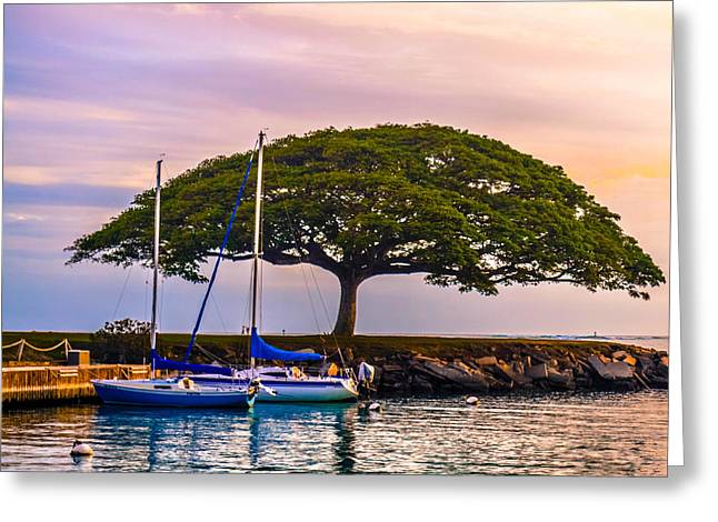 Hickam Greeting Cards - Hickam Harbor View Greeting Card by Lisa Cortez